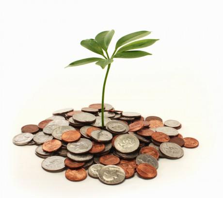 Investice do start-upů