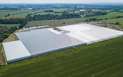 COVID-19 vs. výstavba skleníků