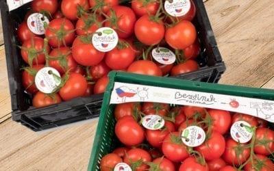 Nové balení střapcových rajčat z Farmy Bezdínek